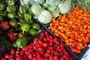 CSA Farm stores, Agri Food business grant